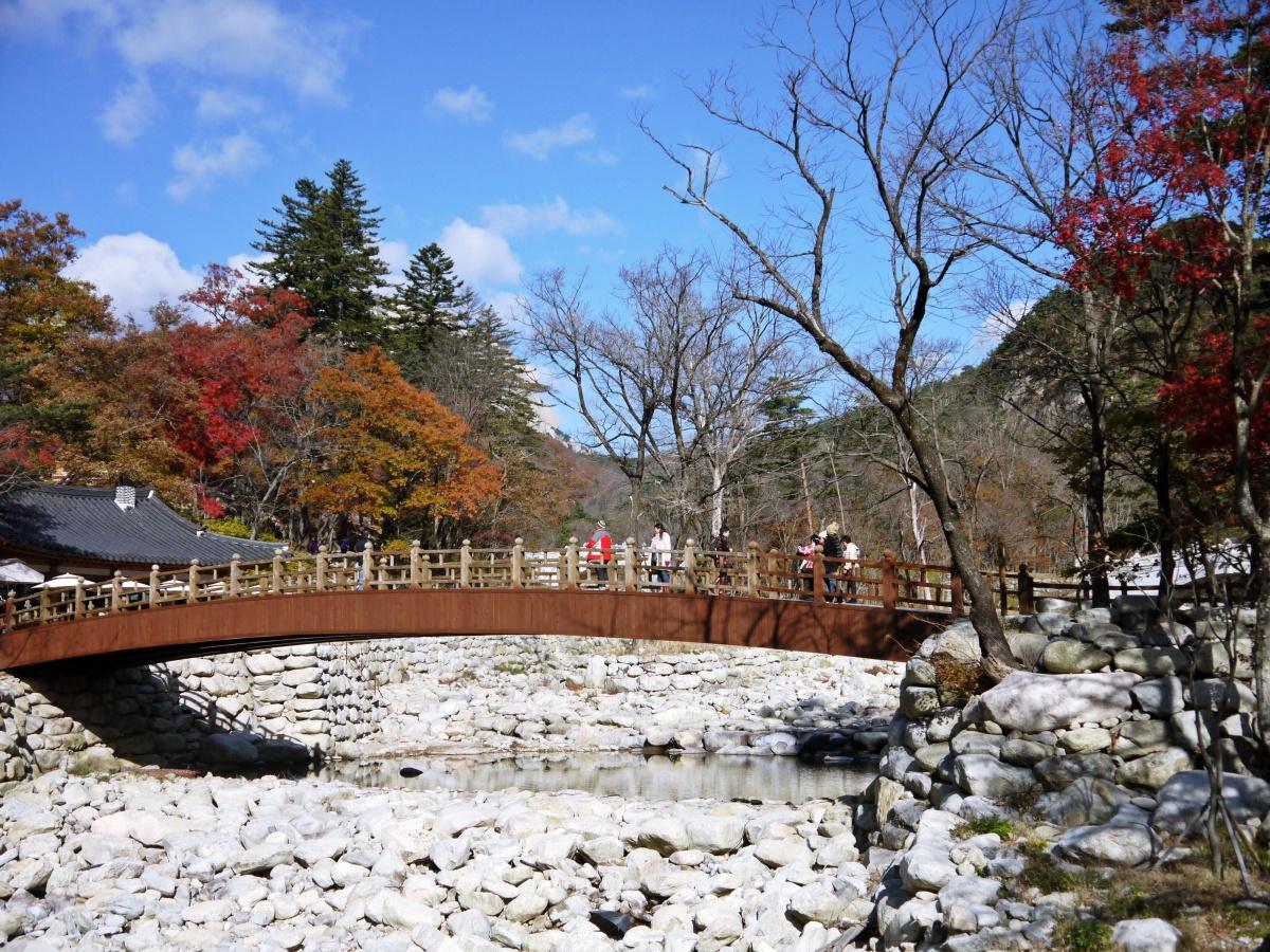 South Korea: Colours of Autumn foliage