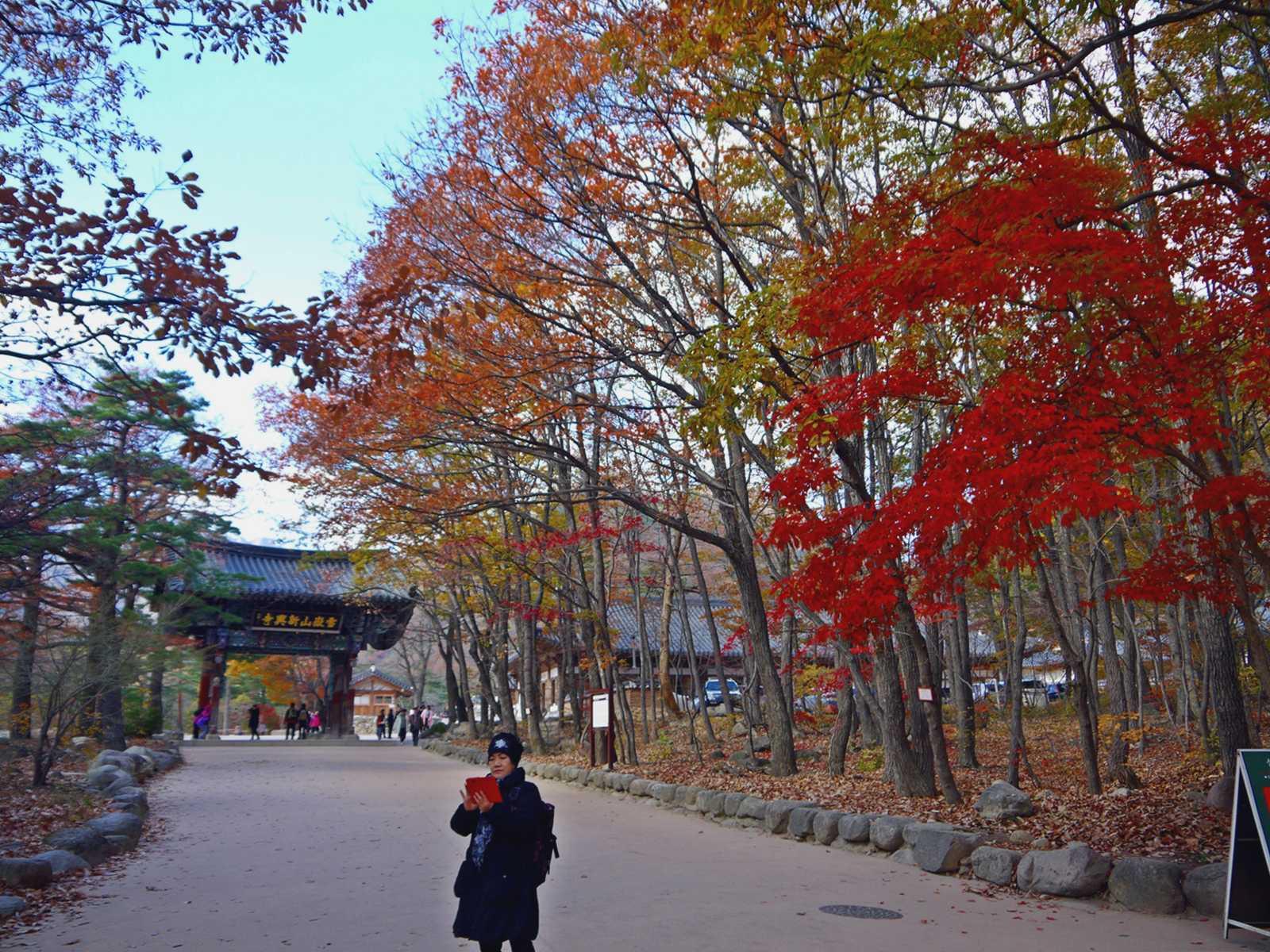 Mount Seoraksan National Park south korea