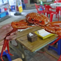 Live crab from the market