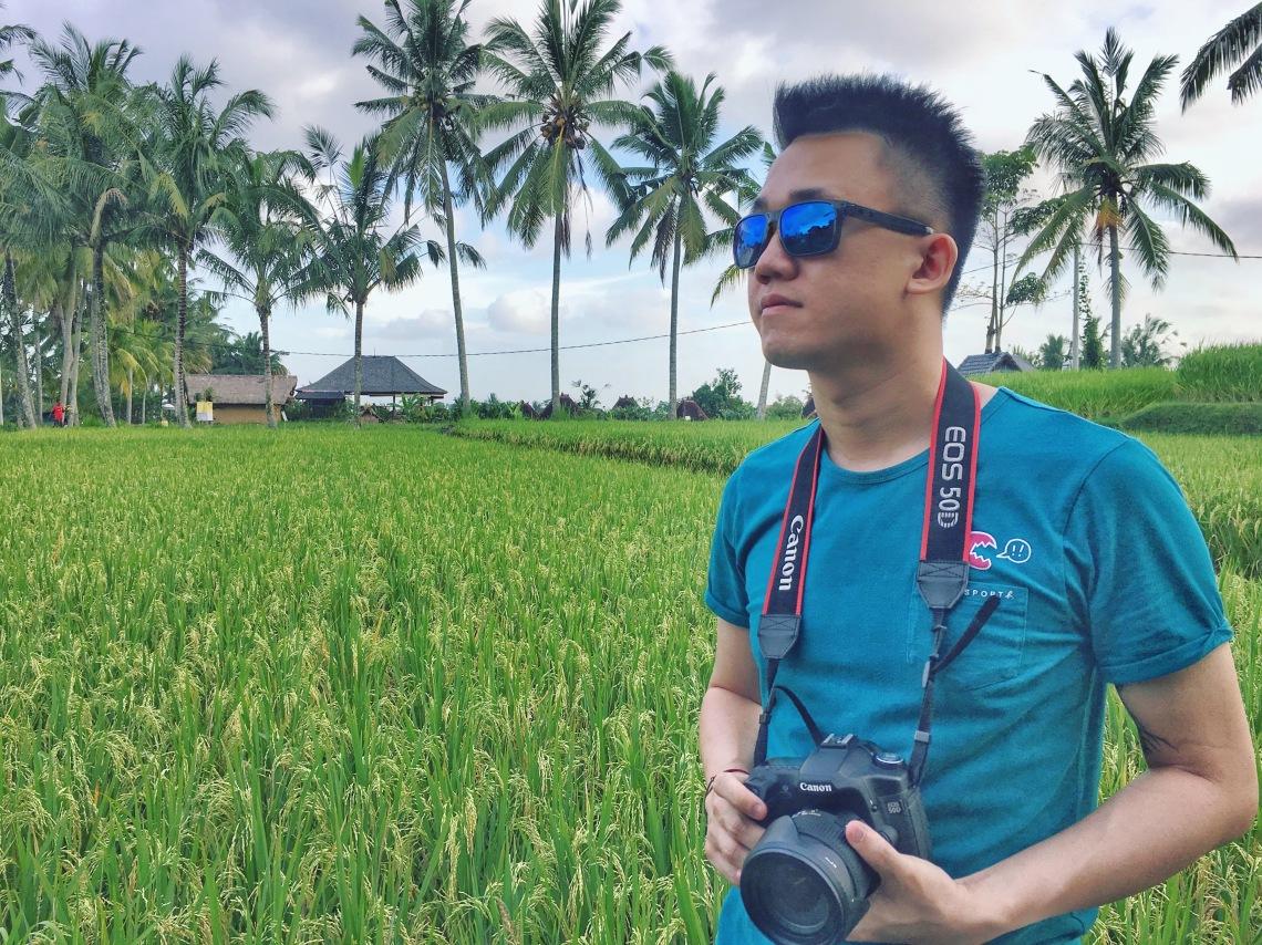 Paddy fields in Ubud jermpins bali