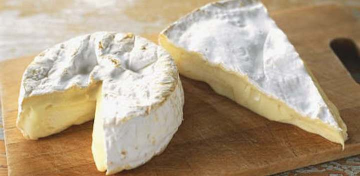 Camembert and Brie jermpins