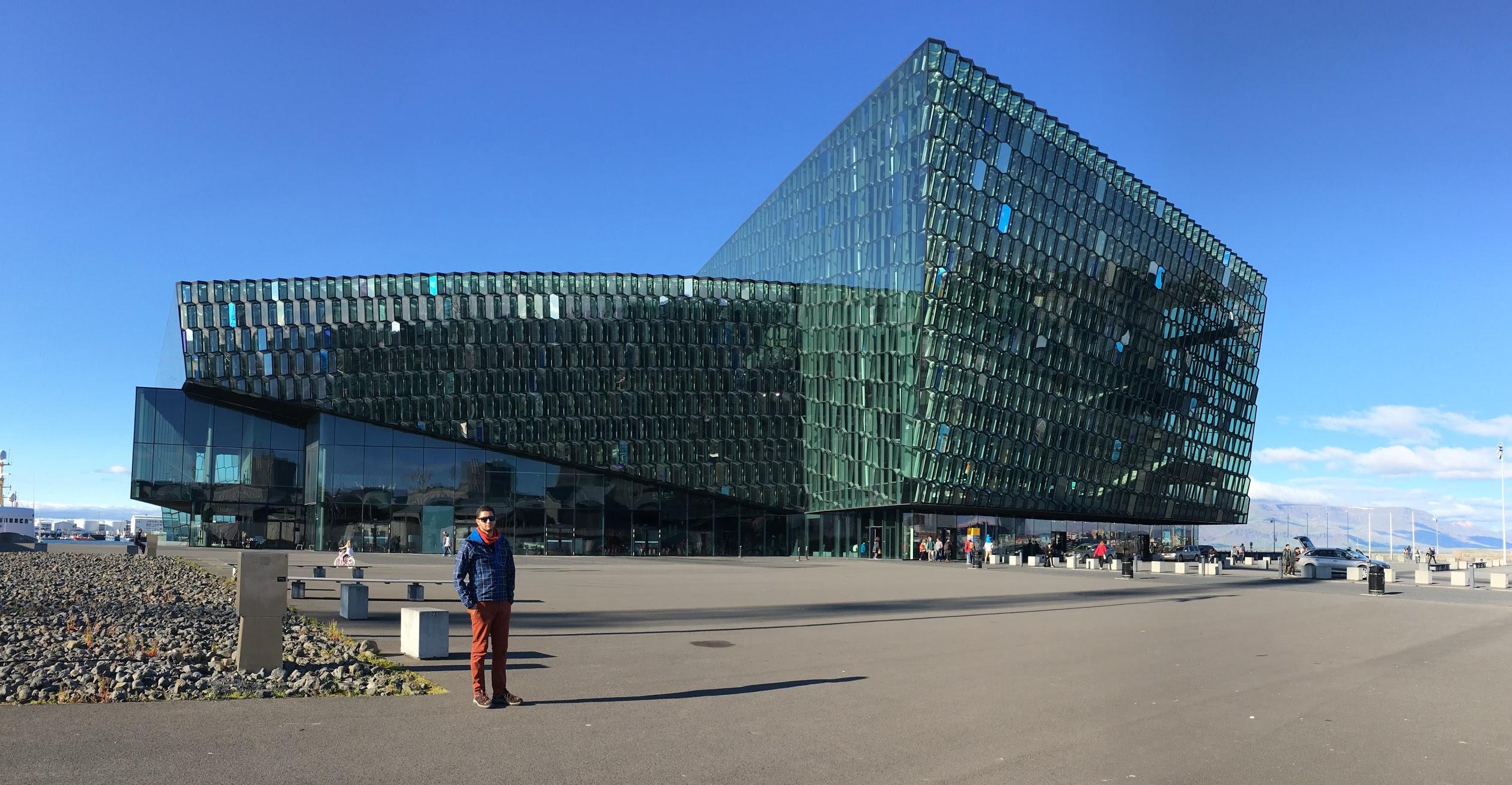 jermpins iceland harpa concert hall