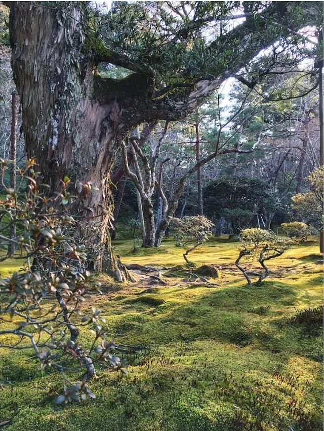 jermpins-kyoto-japan-ginkakuji-1.jpg