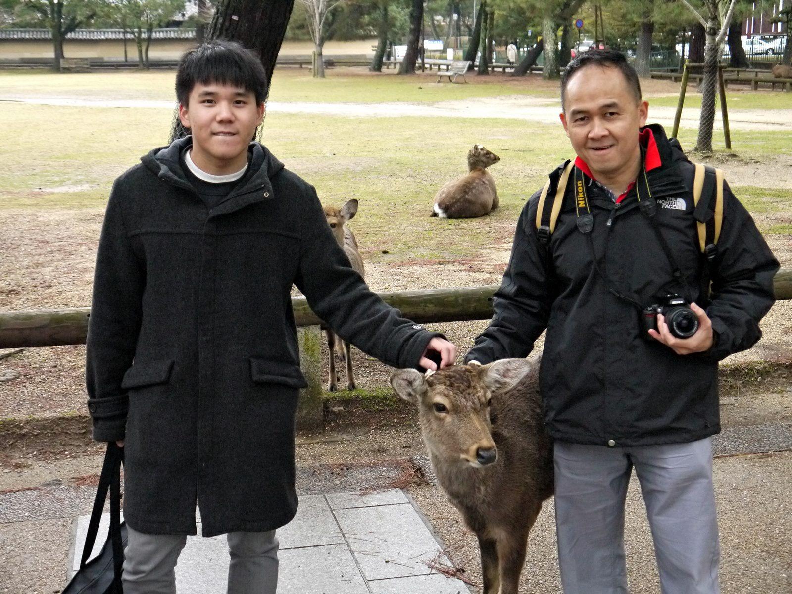 jermpins kyoto nara japan (2)